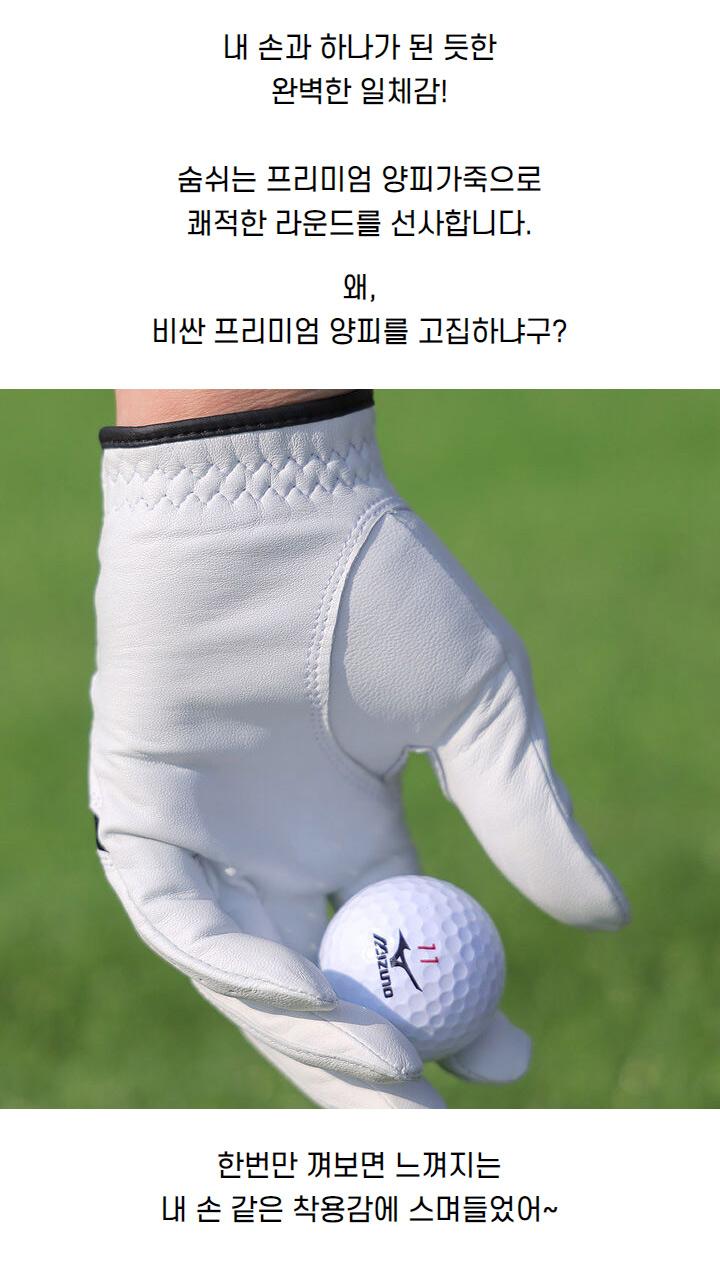 mizuno_sheepskin_golf_gloves_m_21_05.jpg